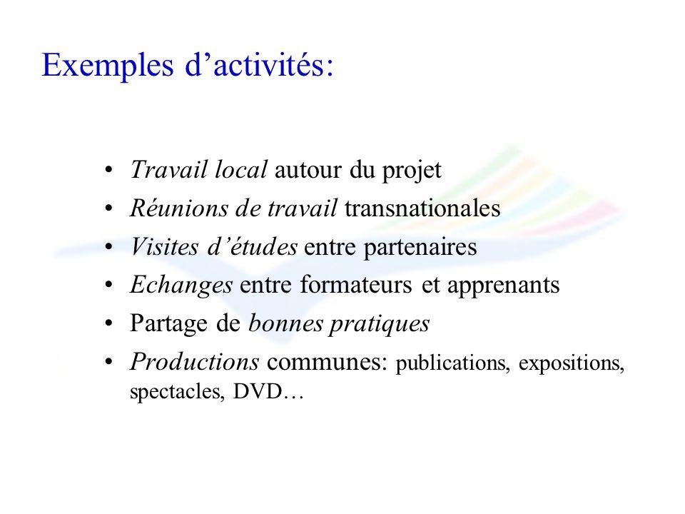 Exemples dactivités: Travail local autour du projet Réunions de travail transnationales Visites détudes entre partenaires Echanges entre formateurs et