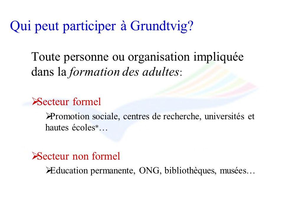 Qui peut participer à Grundtvig? Toute personne ou organisation impliquée dans la formation des adultes : Secteur formel Promotion sociale, centres de