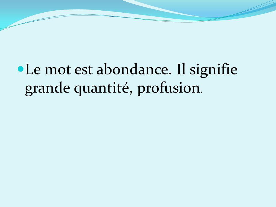 Le mot est abondance. Il signifie grande quantité, profusion.