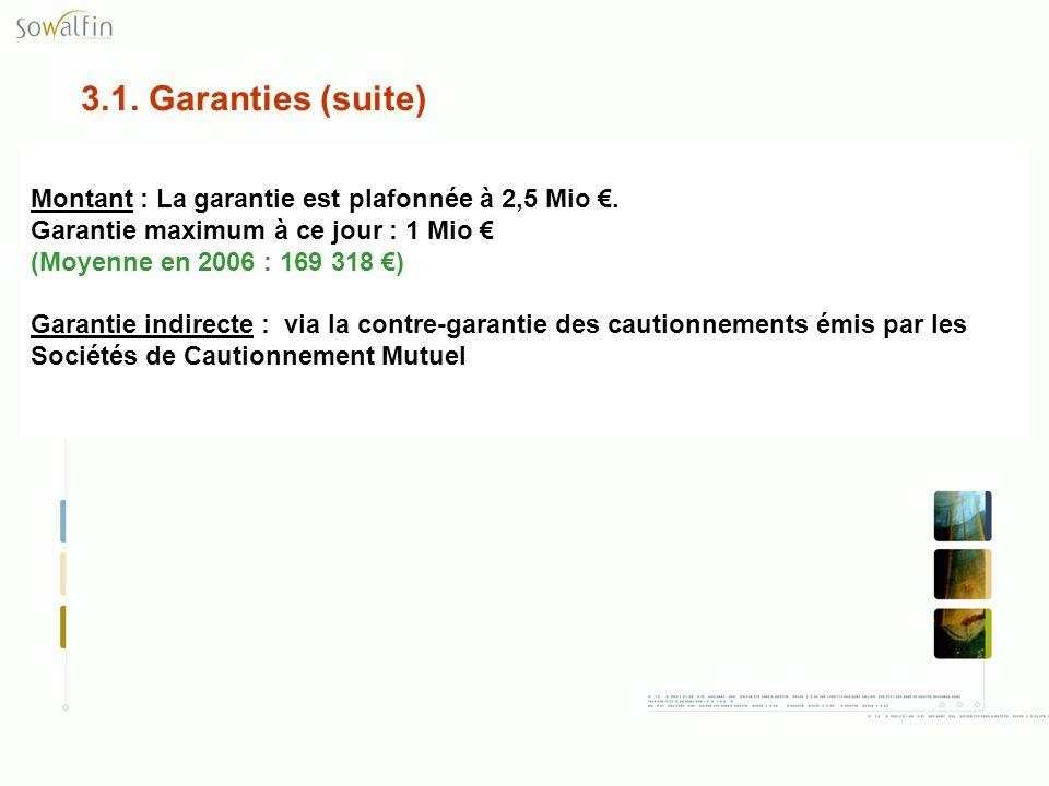 3.1. Garanties (suite) Montant : La garantie est plafonnée à 2,5 Mio. Garantie maximum à ce jour : 1 Mio (Moyenne en 2006 : 169 318 ) Garantie indirec