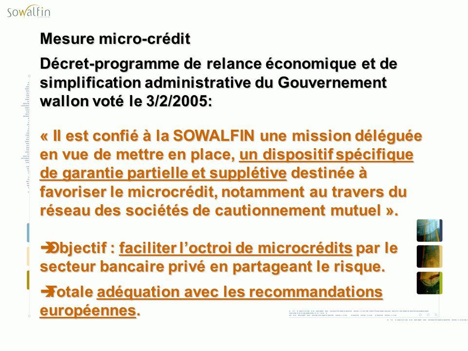 Mesure micro-crédit Décret-programme de relance économique et de simplification administrative du Gouvernement wallon voté le 3/2/2005: « Il est confi