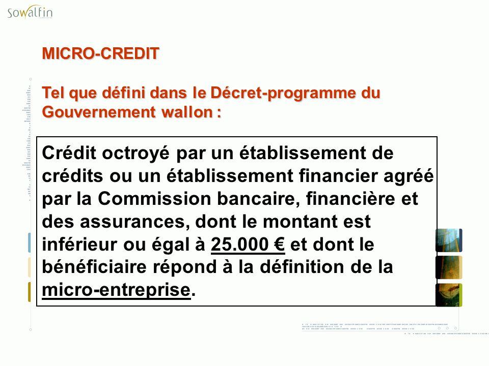 MICRO-CREDIT Tel que défini dans le Décret-programme du Gouvernement wallon : Crédit octroyé par un établissement de crédits ou un établissement finan