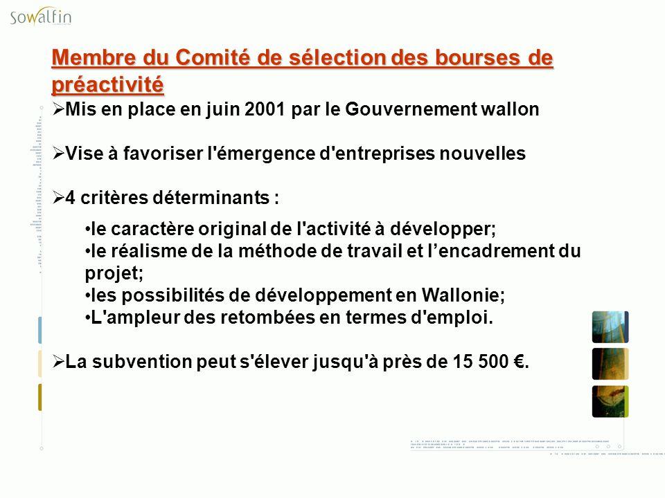 Membre du Comité de sélection des bourses de préactivité Mis en place en juin 2001 par le Gouvernement wallon Vise à favoriser l'émergence d'entrepris