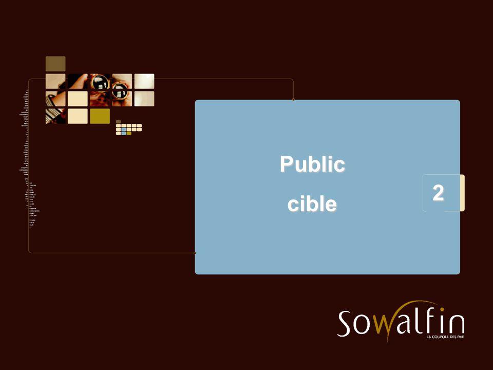 2 Publiccible
