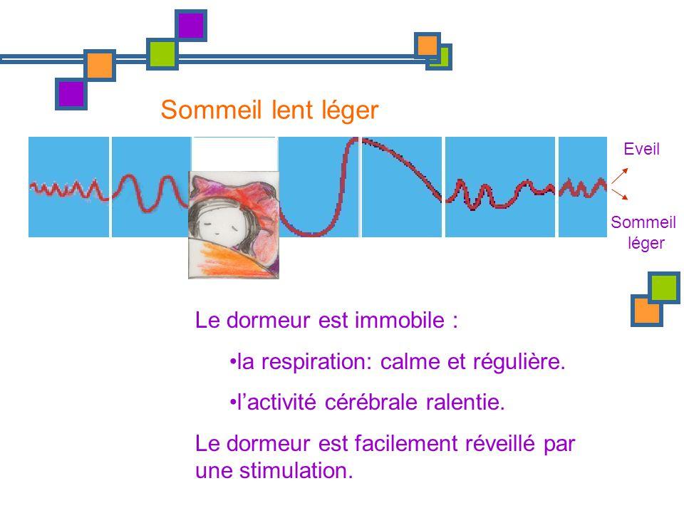 Eveil Sommeil léger Sommeil lent léger Le dormeur est immobile : la respiration: calme et régulière. lactivité cérébrale ralentie. Le dormeur est faci