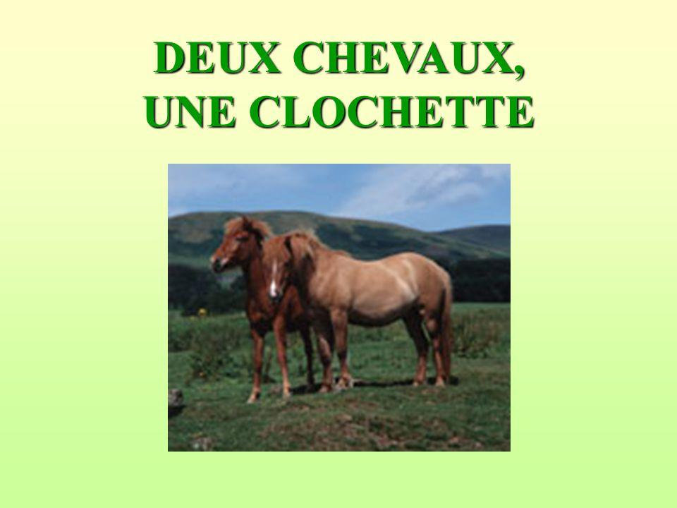 DEUX CHEVAUX, UNE CLOCHETTE