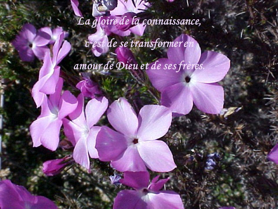 La gloire de la connaissance, cest de se transformer en amour de Dieu et de ses frères.