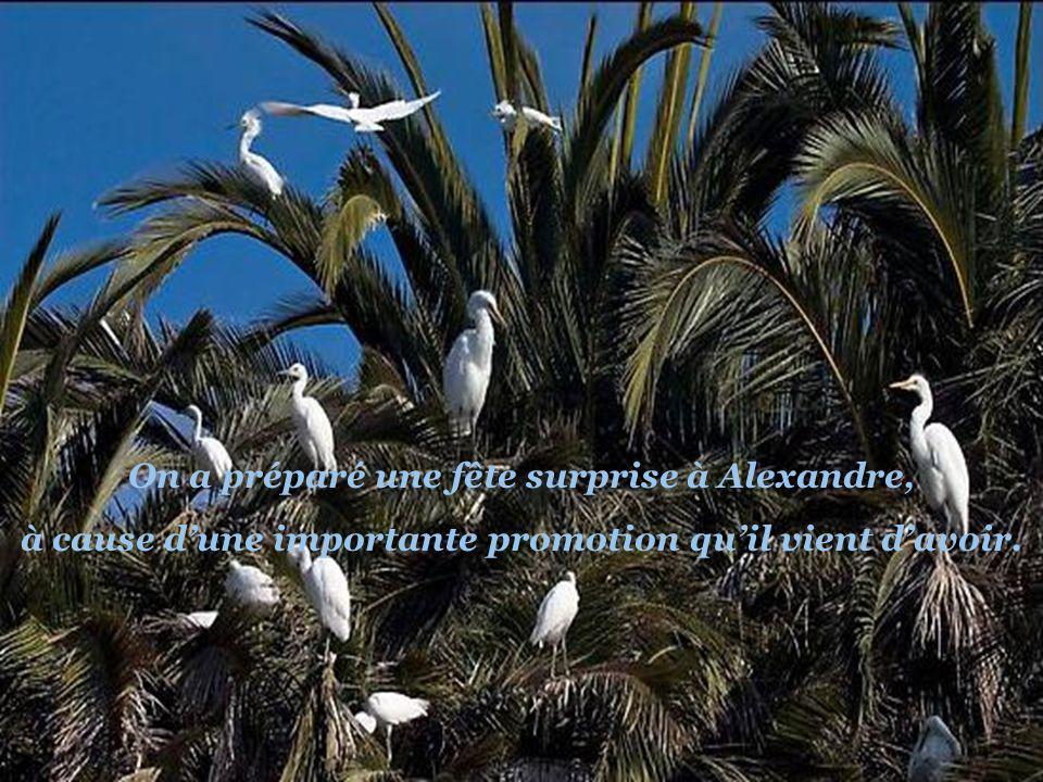 On a oublié Alexandre !