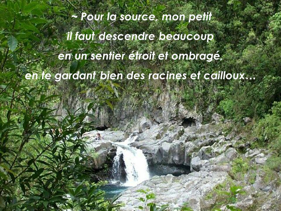 « Exultant de joie, vous puiserez les eaux aux sources du salut.» Is 12,3 Et la Source, dis-moi, où donc la trouverai-je ?