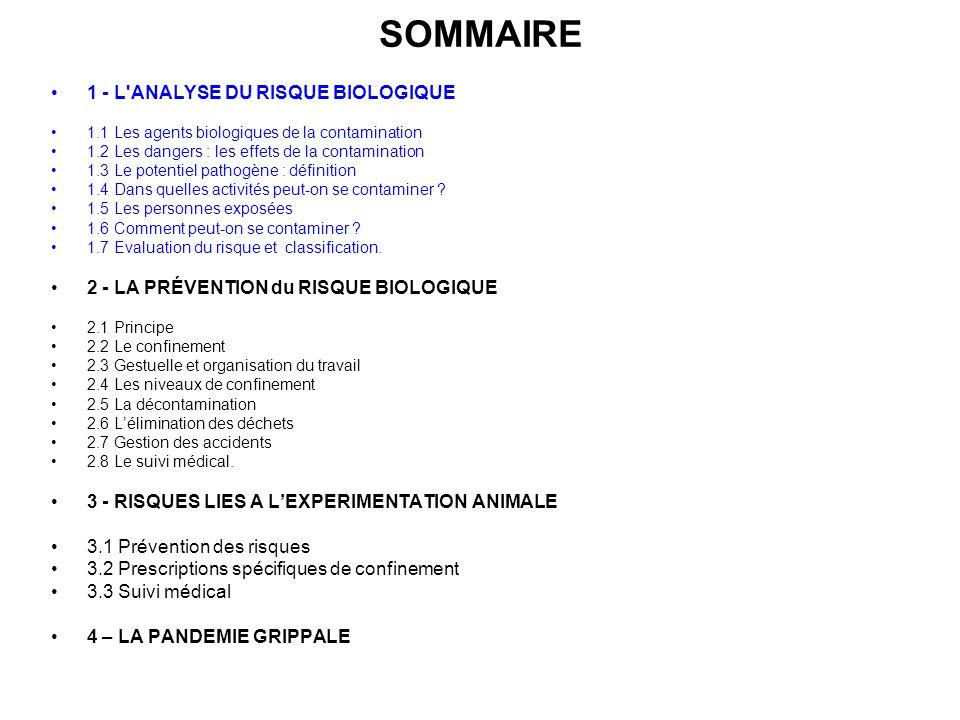 SOMMAIRE 1 - L'ANALYSE DU RISQUE BIOLOGIQUE 1.1 Les agents biologiques de la contamination 1.2 Les dangers : les effets de la contamination 1.3 Le pot