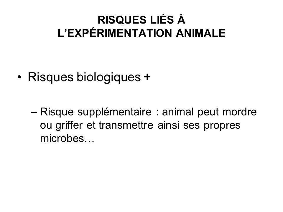 RISQUES LIÉS À LEXPÉRIMENTATION ANIMALE Risques biologiques + –Risque supplémentaire : animal peut mordre ou griffer et transmettre ainsi ses propres