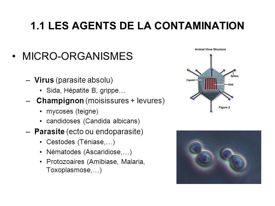 1.1 LES AGENTS DE LA CONTAMINATION MICRO-ORGANISMES –Virus (parasite absolu) Sida, Hépatite B, grippe… – Champignon (moisissures + levures) mycoses (t
