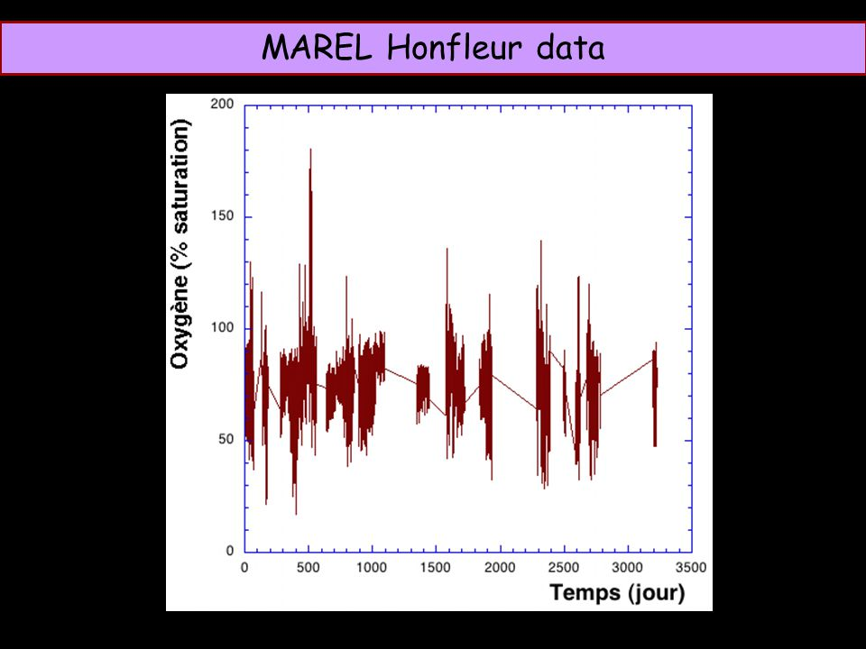 T MAREL Honfleur data