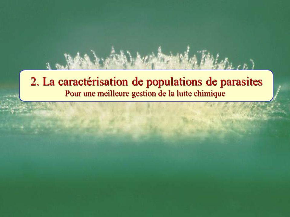 2. La caractérisation de populations de parasites Pour une meilleure gestion de la lutte chimique