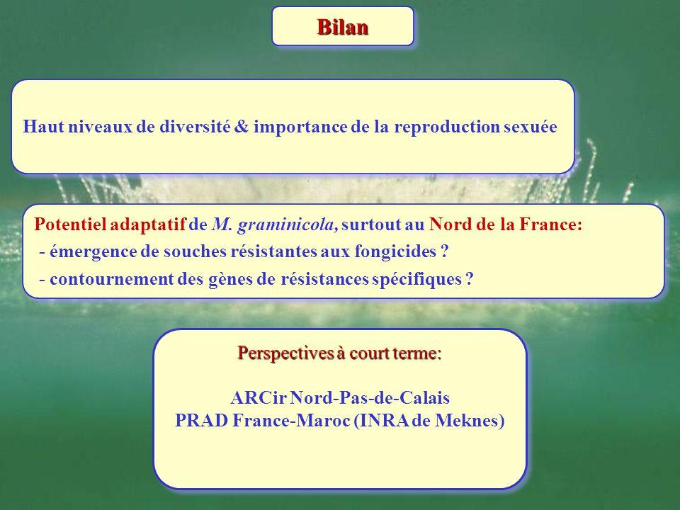 BilanBilan Haut niveaux de diversité & importance de la reproduction sexuée Potentiel adaptatif de M. graminicola, surtout au Nord de la France: - éme