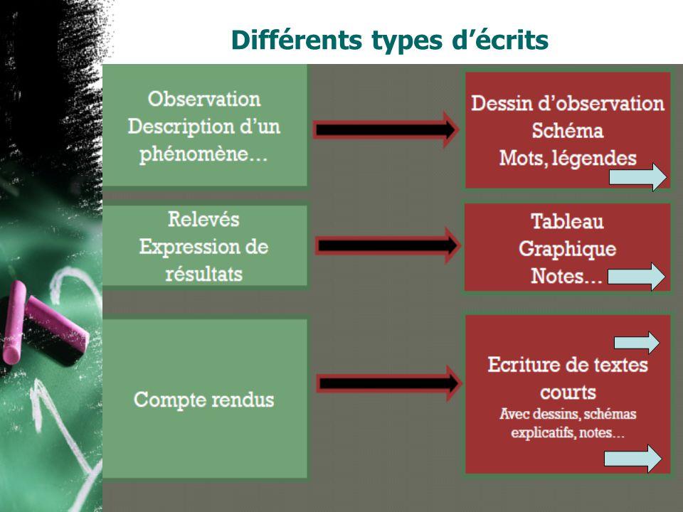 Différents types décrits