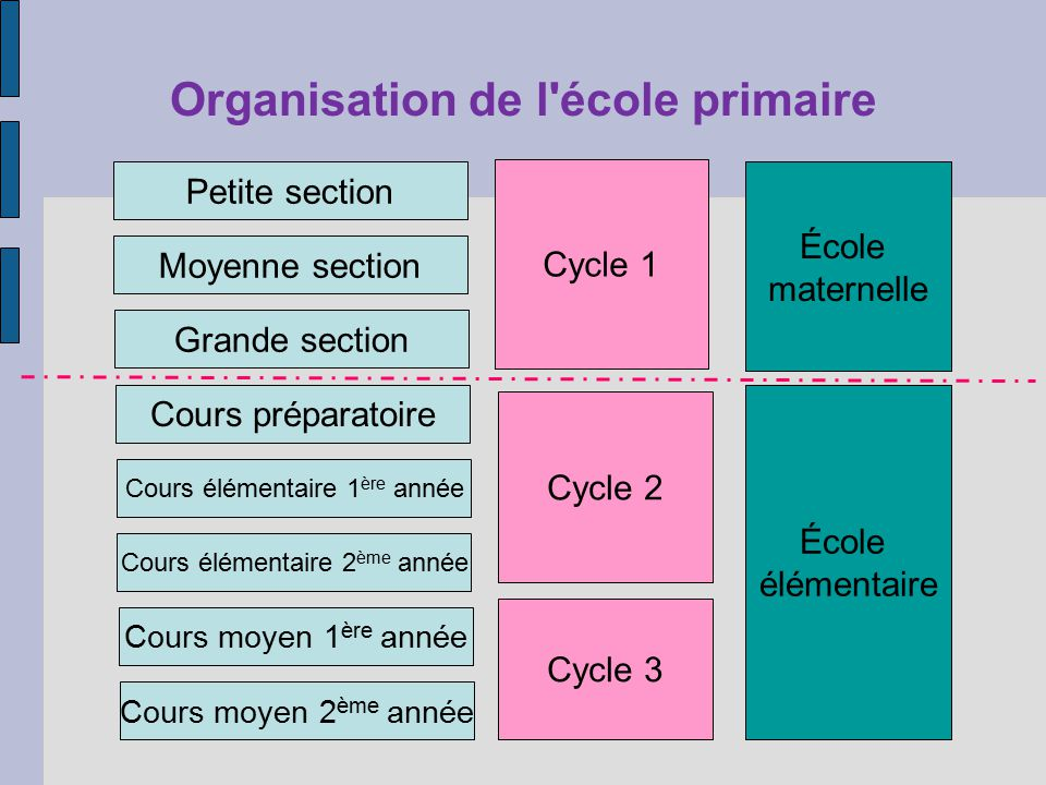 Organisation de l'école primaire Petite section Moyenne section Grande section Cours préparatoire Cours élémentaire 1 ère année Cours élémentaire 2 èm