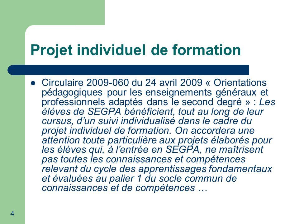 15 Projet individuel de formation Bilan 2009-2010 à partir de lanalyse de 88 P.I.F.