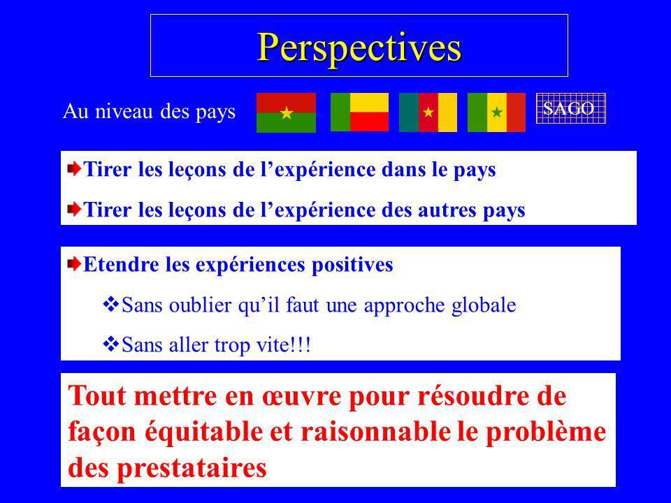 Perspectives Au niveau des pays Tirer les leçons de lexpérience dans le pays Tirer les leçons de lexpérience des autres pays Etendre les expériences p