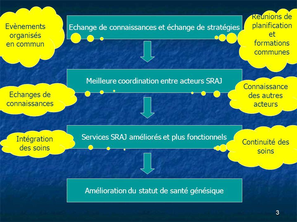 Echange de connaissances et échange de stratégies Meilleure coordination entre acteurs SRAJ Services SRAJ améliorés et plus fonctionnels Amélioration du statut de santé génésique Réunions de planification et formations communes Evènements organisés en commun Connaissance des autres acteurs Echanges de connaissances Continuité des soins Intégration des soins 3