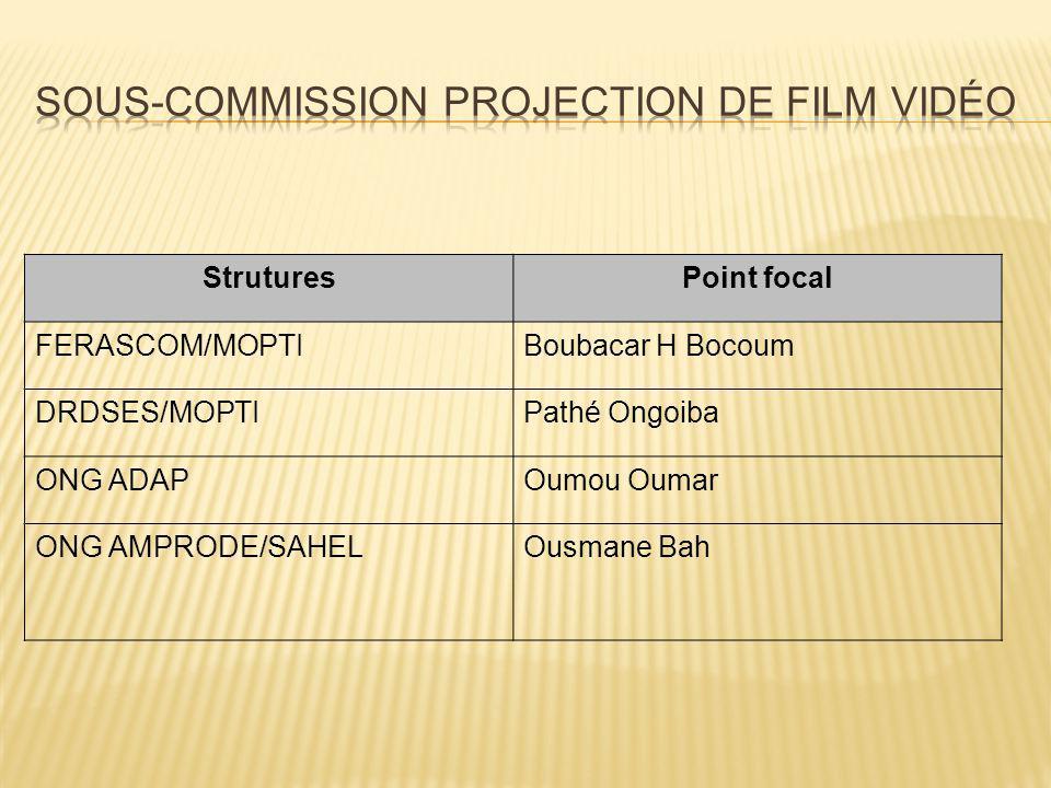 StruturesPoint focal FERASCOM/MOPTIBoubacar H Bocoum DRDSES/MOPTIPathé Ongoiba ONG ADAPOumou Oumar ONG AMPRODE/SAHELOusmane Bah