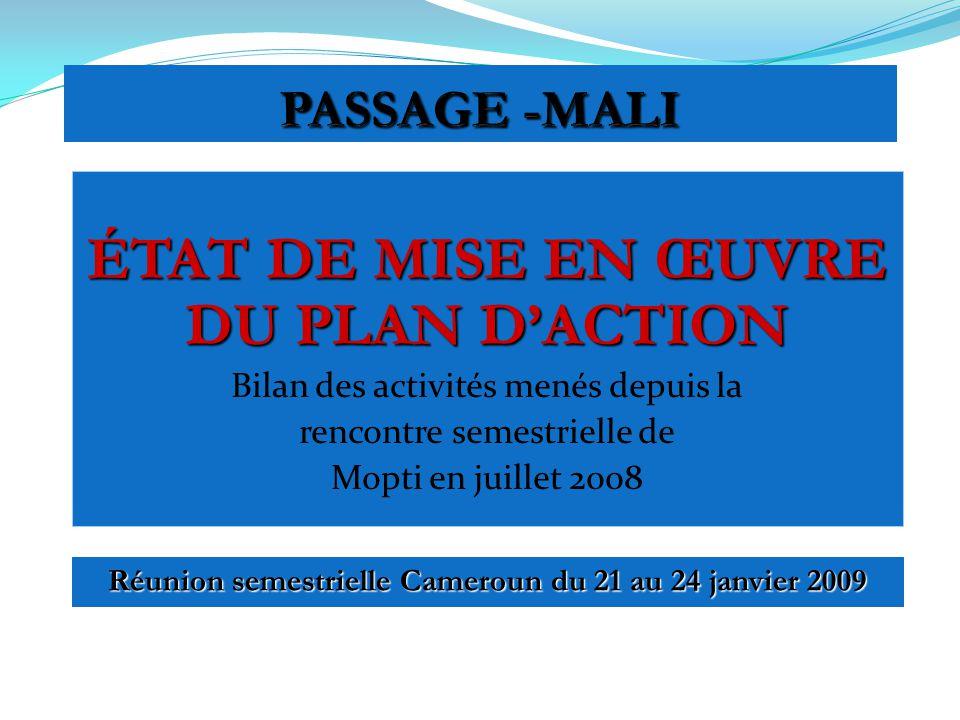 ÉTAT DE MISE EN ŒUVRE DU PLAN DACTION Bilan des activités menés depuis la rencontre semestrielle de Mopti en juillet 2008 Réunion semestrielle Cameroun du 21 au 24 janvier 2009