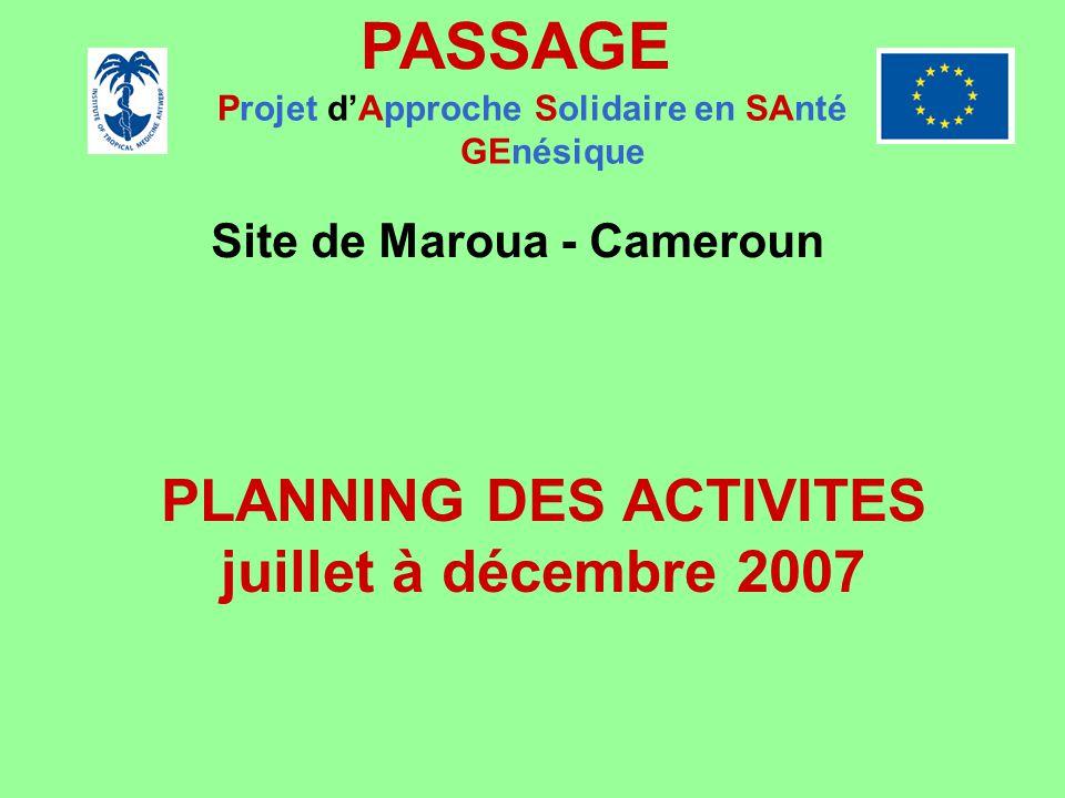 PASSAGE Projet dApproche Solidaire en SAnté GEnésique Site de Maroua - Cameroun PLANNING DES ACTIVITES juillet à décembre 2007