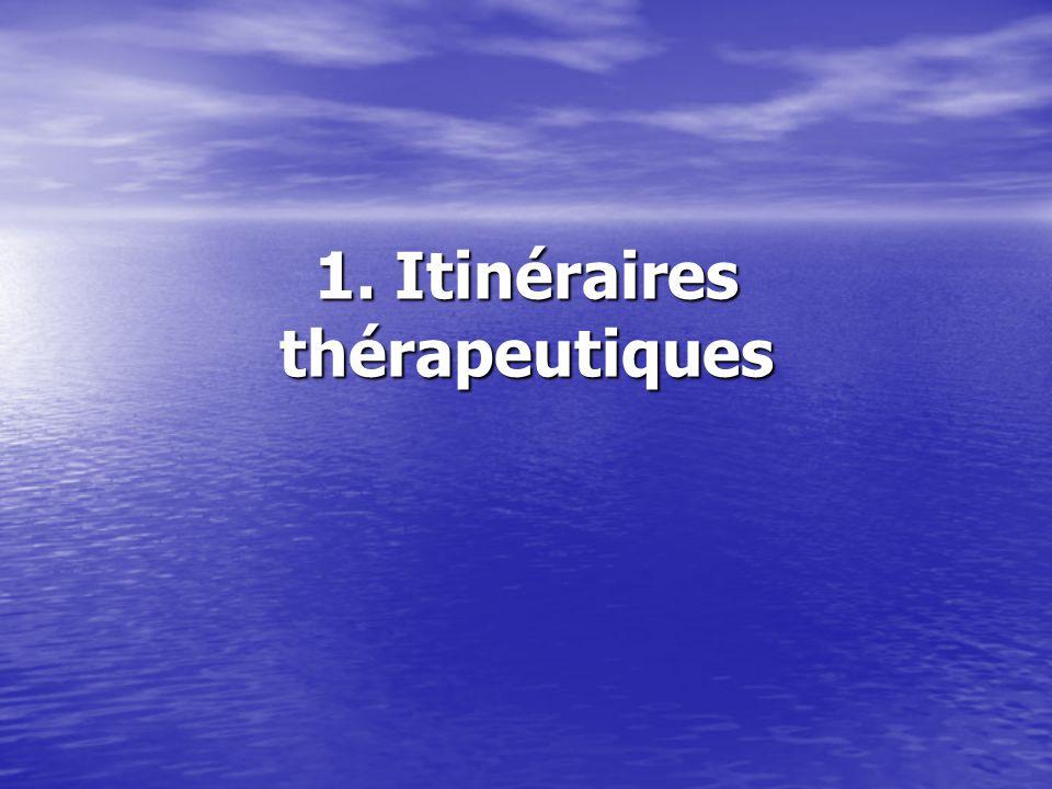 1. Itinéraires thérapeutiques