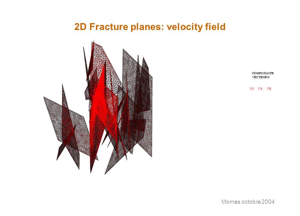 Momas octobre 2004 2D Fracture planes: velocity field
