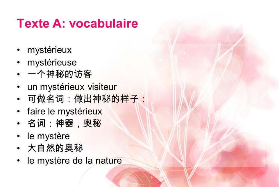 Texte A: vocabulaire mystérieux mystérieuse un mystérieux visiteur faire le mystérieux le mystère le mystère de la nature