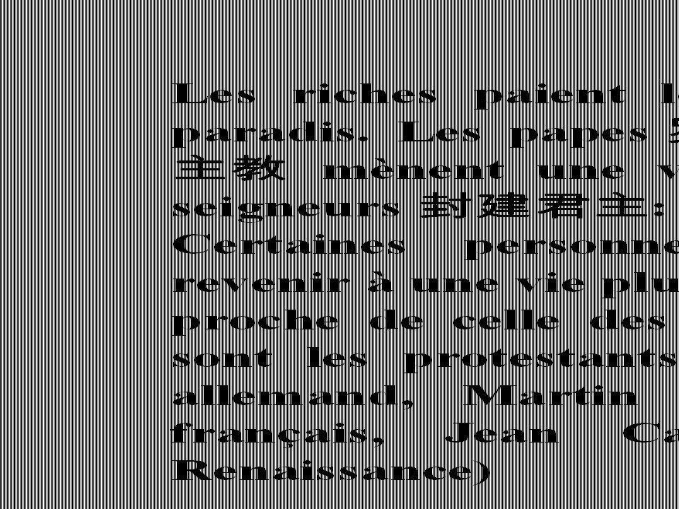 Les imams prêchant en France sont marocains contre 24% d Alg é riens..