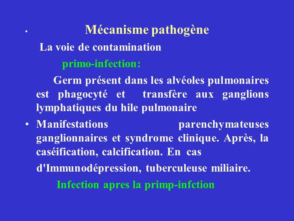 Mécanisme pathogène La voie de contamination primo-infection: Germ présent dans les alvéoles pulmonaires est phagocyté et transfère aux ganglions lymphatiques du hile pulmonaire Manifestations parenchymateuses ganglionnaires et syndrome clinique.