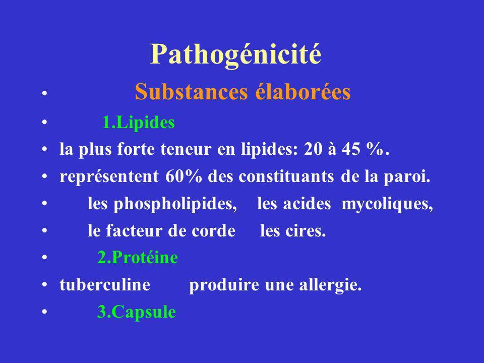 Pathogénicité Substances élaborées 1.Lipides la plus forte teneur en lipides: 20 à 45 %.