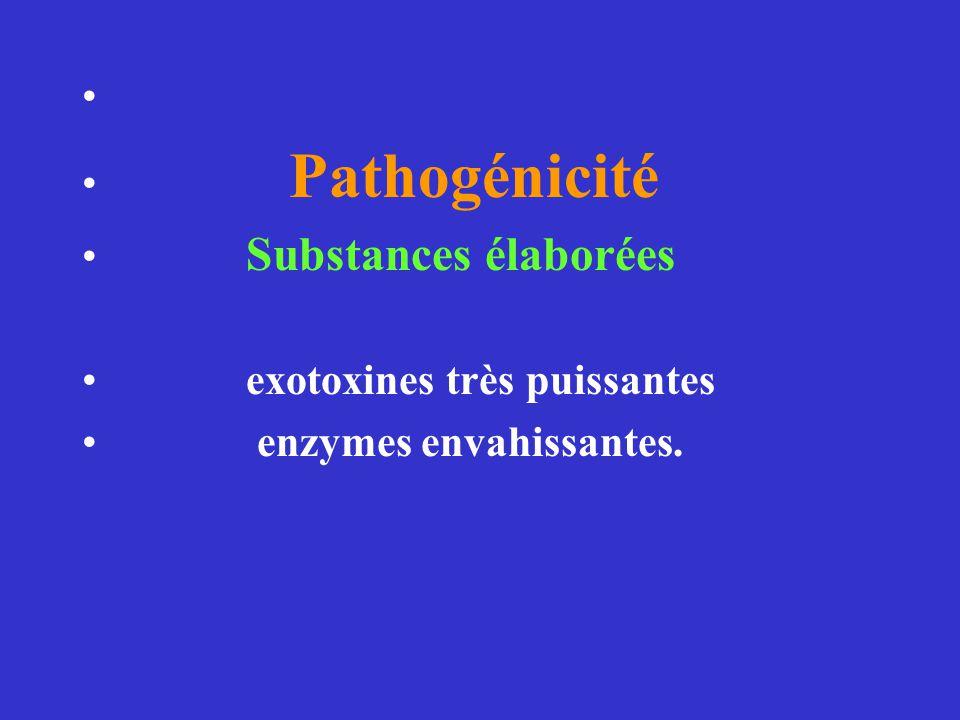 Pathogénicité Substances élaborées exotoxines très puissantes enzymes envahissantes.
