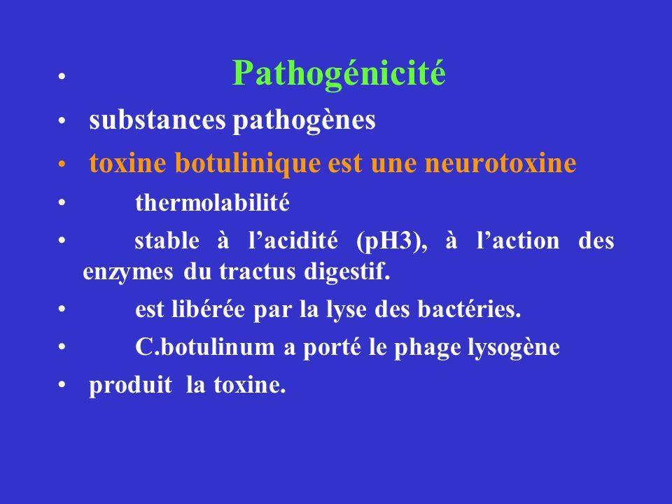 Pathogénicité substances pathogènes toxine botulinique est une neurotoxine thermolabilité stable à lacidité (pH3), à laction des enzymes du tractus di