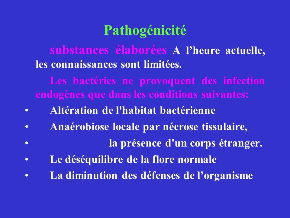 Pathogénicité substances élaborées A lheure actuelle, les connaissances sont limitées. Les bactéries ne provoquent des infection endogènes que dans le