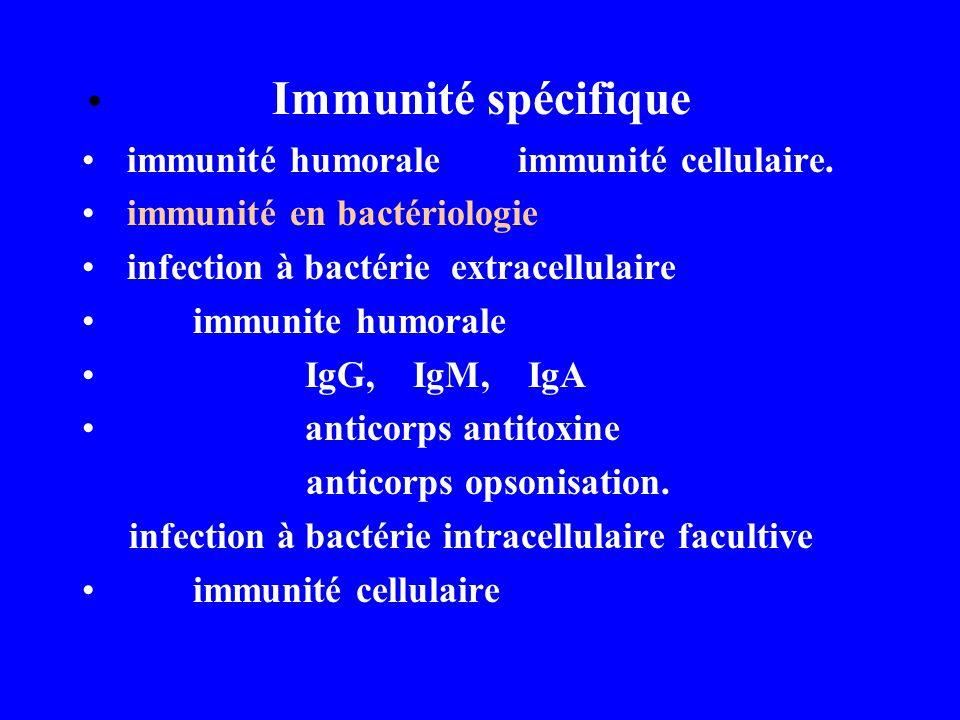 Immunité spécifique immunité humorale immunité cellulaire. immunité en bactériologie infection à bactérie extracellulaire immunite humorale IgG, IgM,