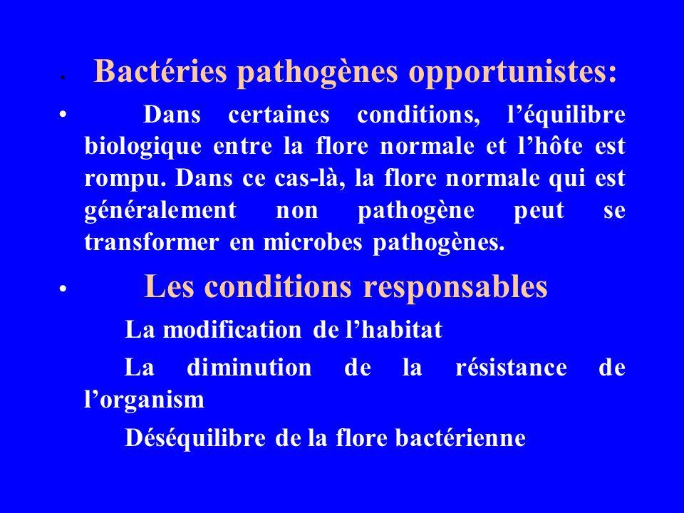 Bactéries pathogènes opportunistes: Dans certaines conditions, léquilibre biologique entre la flore normale et lhôte est rompu. Dans ce cas-là, la flo