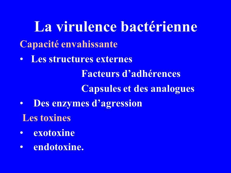 La virulence bactérienne Capacité envahissante Les structures externes Facteurs dadhérences Capsules et des analogues Des enzymes dagression Les toxin