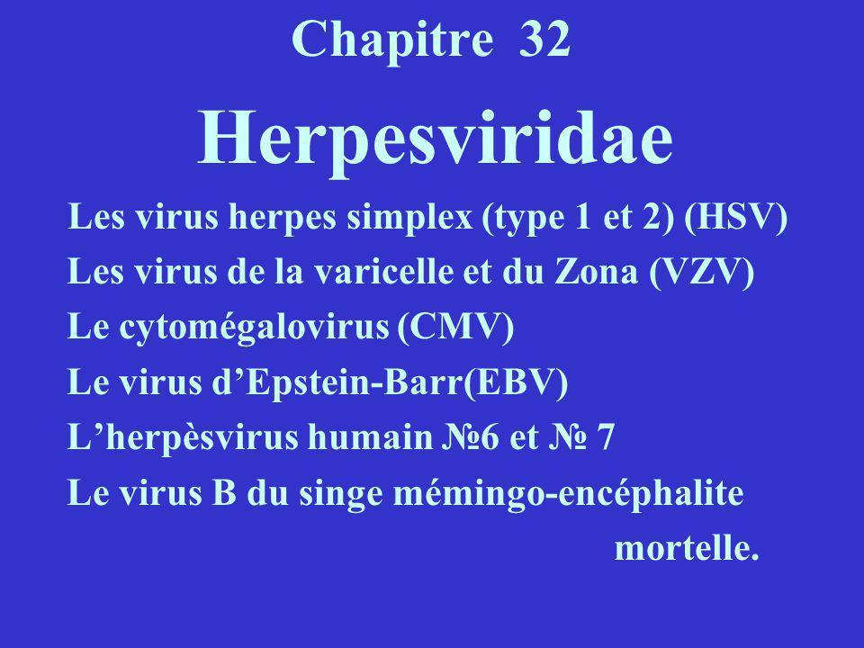 Chapitre 32 Herpesviridae Les virus herpes simplex (type 1 et 2) (HSV) Les virus de la varicelle et du Zona (VZV) Le cytomégalovirus (CMV) Le virus dE