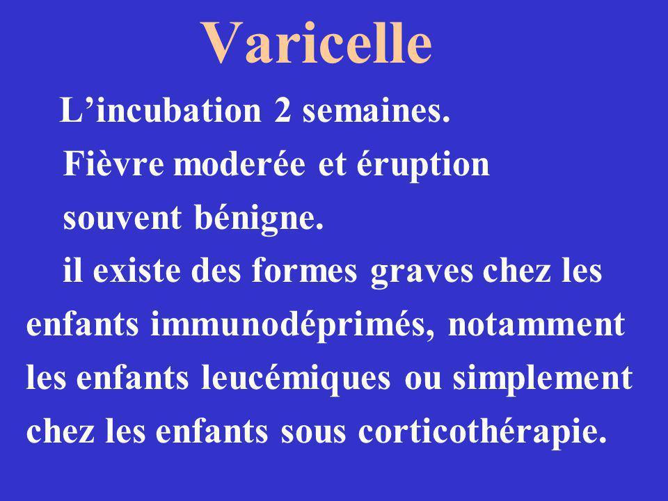 Suite la lyse cellulaire nintervient que très rarement, lorsque le cycle de réplication du virus aboutit à la production de virion.