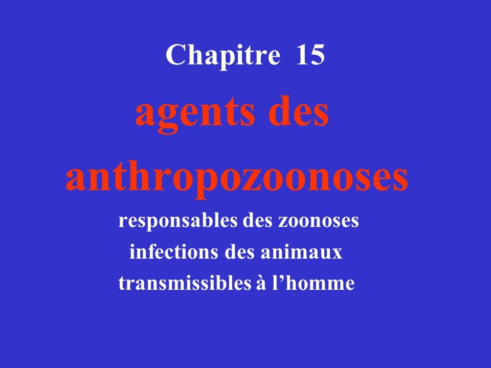 Chapitre 15 agents des anthropozoonoses responsables des zoonoses infections des animaux transmissibles à lhomme