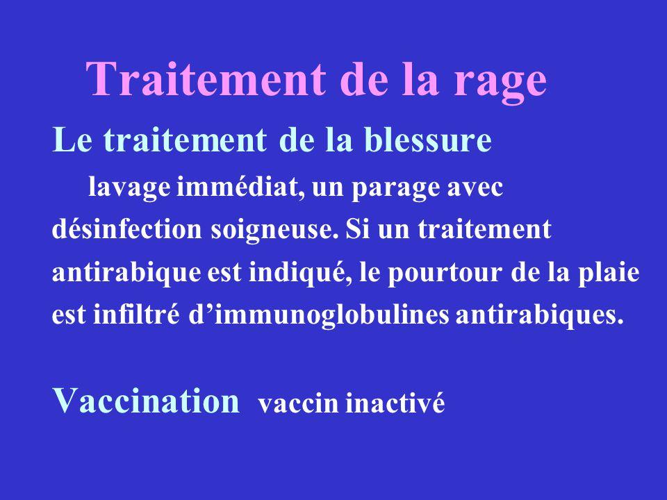 Traitement de la rage Le traitement de la blessure lavage immédiat, un parage avec désinfection soigneuse. Si un traitement antirabique est indiqué, l