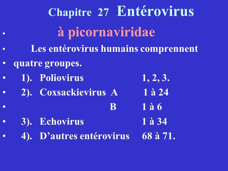 Chapitre 27 Entérovirus à picornaviridae Les entérovirus humains comprennent quatre groupes. 1). Poliovirus 1, 2, 3. 2). Coxsackievirus A 1 à 24 B 1 à