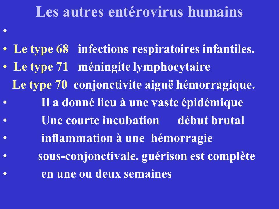 Les autres entérovirus humains Le type 68 infections respiratoires infantiles. Le type 71 méningite lymphocytaire Le type 70 conjonctivite aiguë hémor