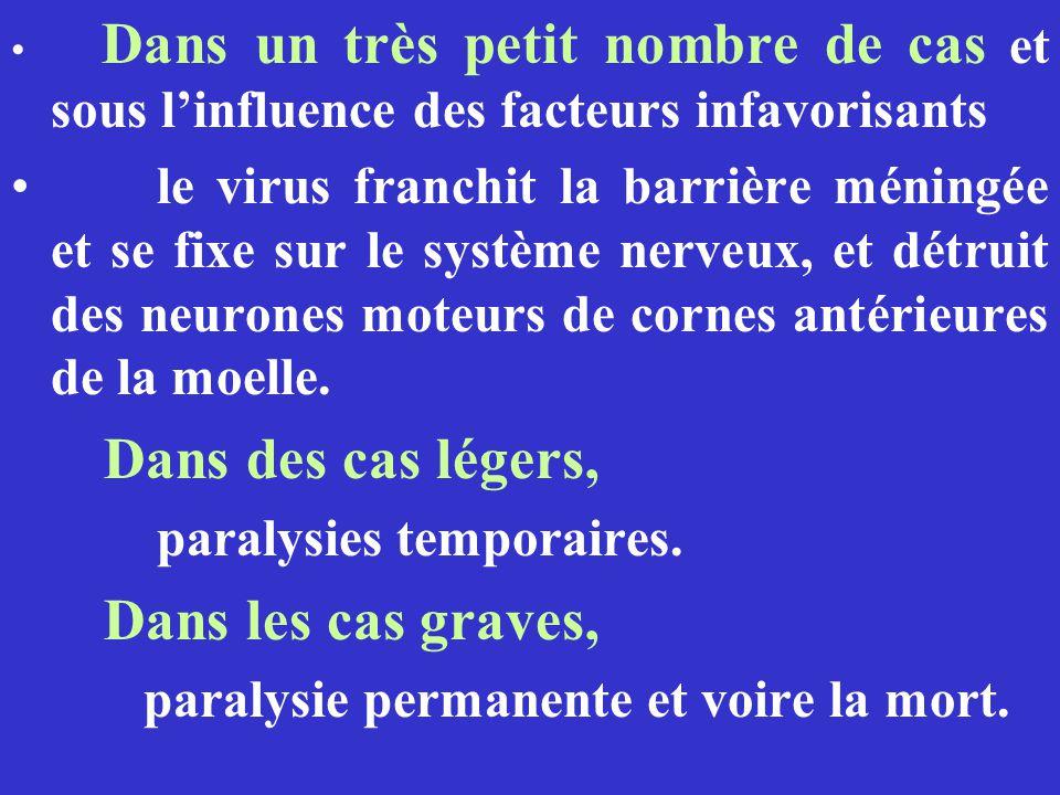 Dans un très petit nombre de cas et sous linfluence des facteurs infavorisants le virus franchit la barrière méningée et se fixe sur le système nerveu