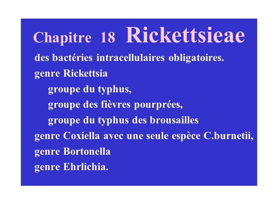 Chapitre 18 Rickettsieae des bactéries intracellulaires obligatoires. genre Rickettsia groupe du typhus, groupe des fièvres pourprées, groupe du typhu