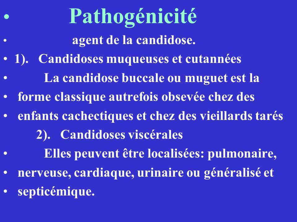 Pathogénicité agent de la candidose. 1). Candidoses muqueuses et cutannées La candidose buccale ou muguet est la forme classique autrefois obsevée che