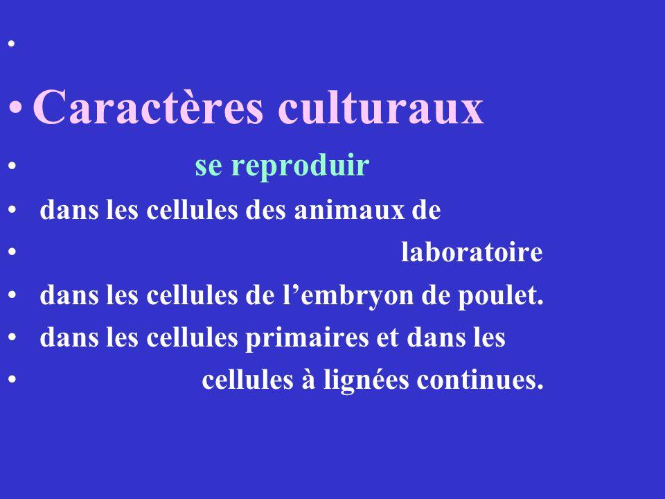 Caractères culturaux se reproduir dans les cellules des animaux de laboratoire dans les cellules de lembryon de poulet. dans les cellules primaires et