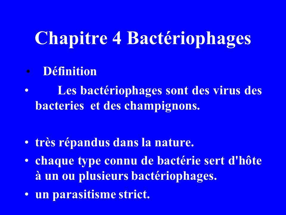 Chapitre 4 Bactériophages Définition Les bactériophages sont des virus des bacteries et des champignons. très répandus dans la nature. chaque type con